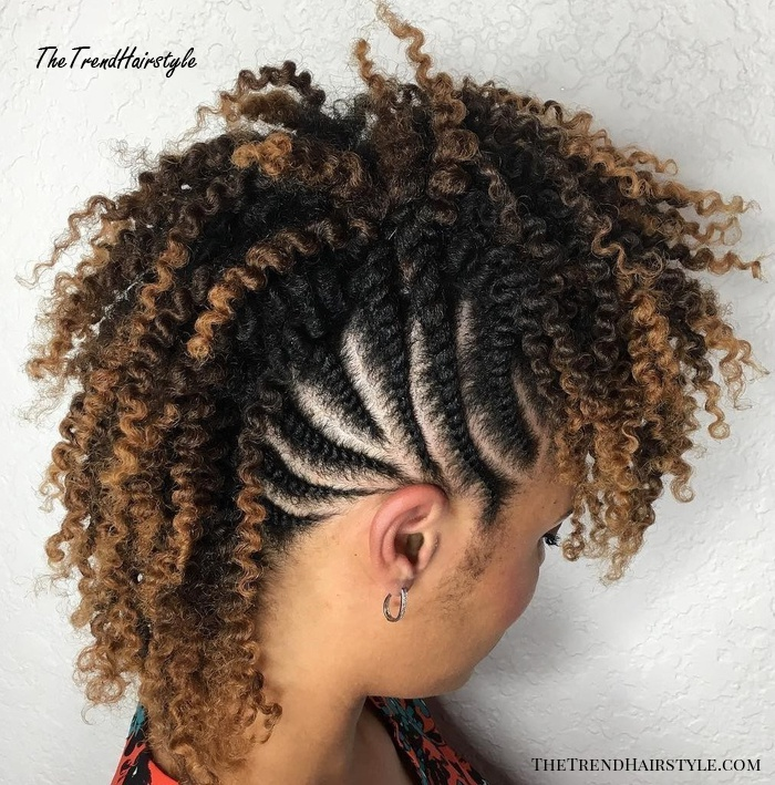 African American Curly Braided Mohawk
