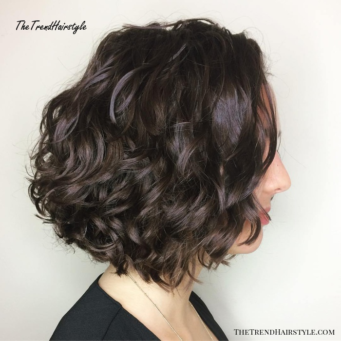Brunette Curly Bob Hairstyle