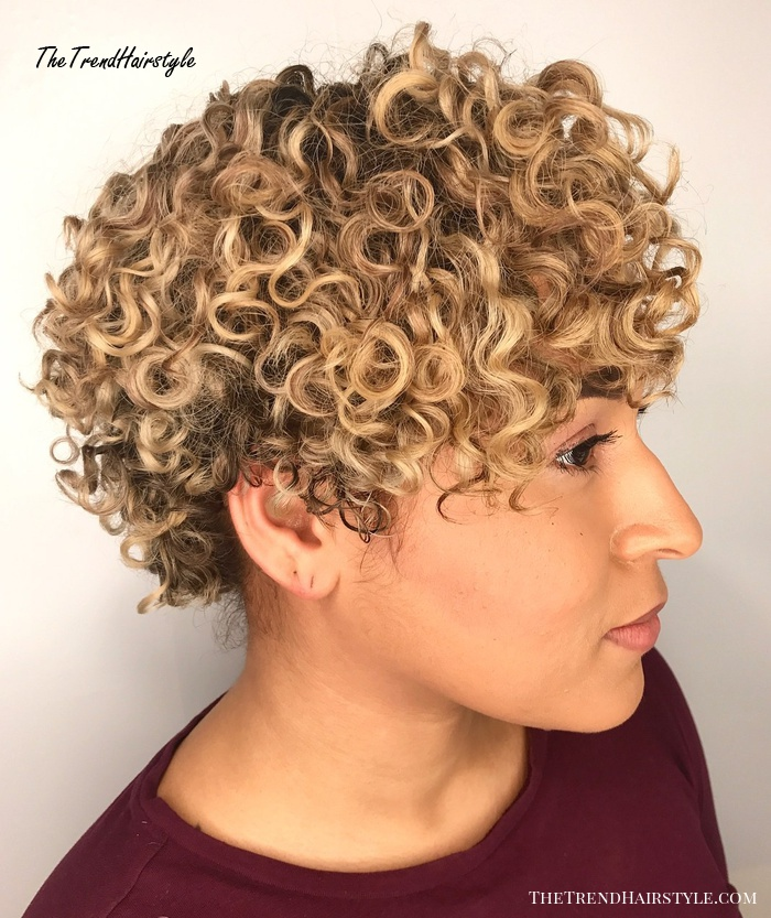 Sun Kissed And Subtle Pintura Highlights For Curly Hair Tips