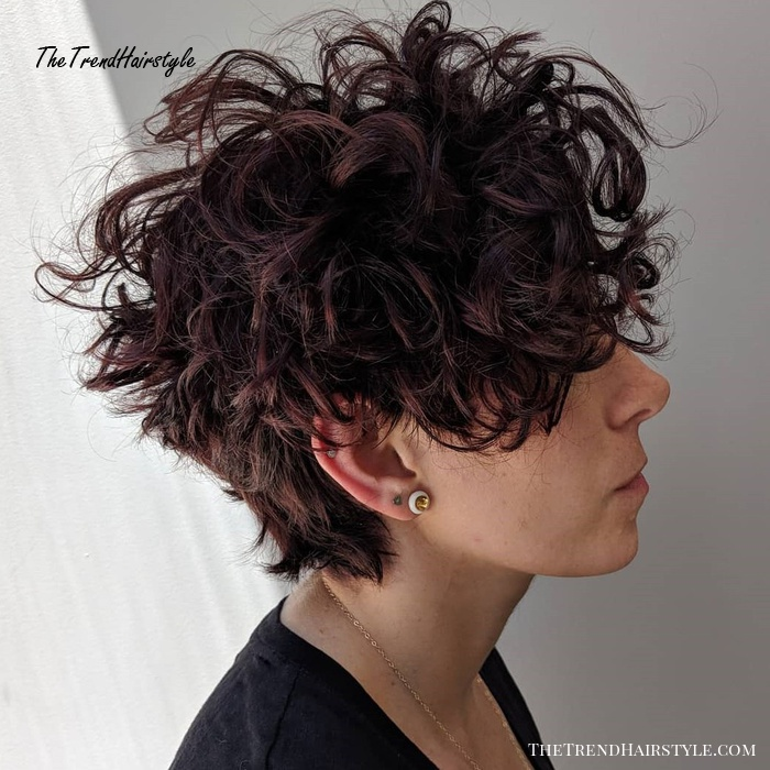 Curly Tapered Brunette Pixie