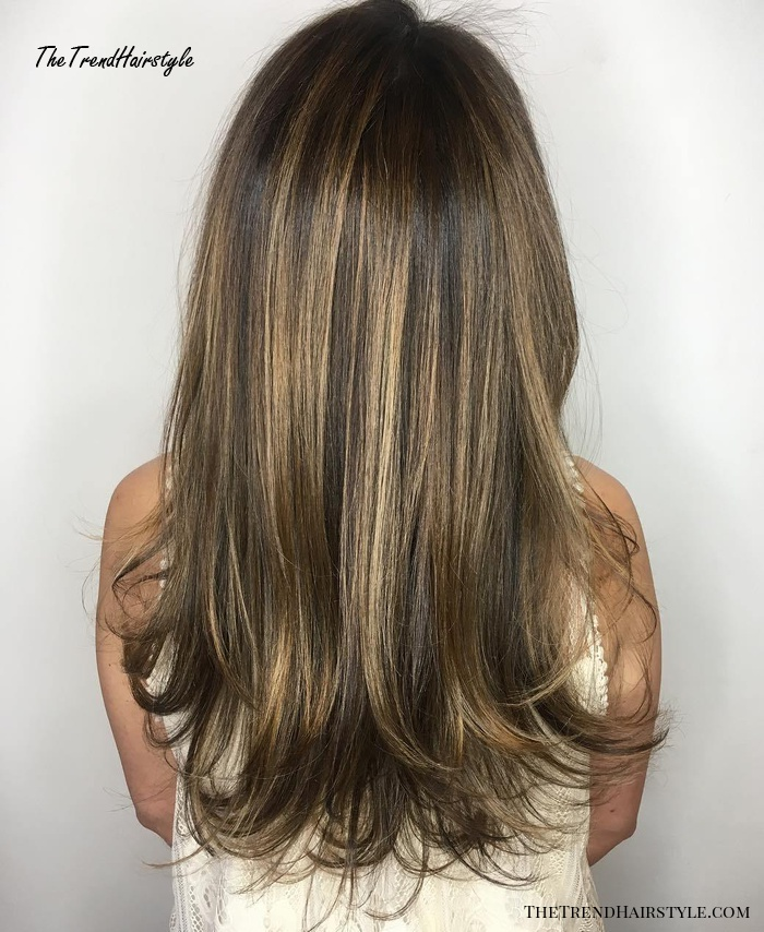 Long Brown Hairstyle With Layered Ends