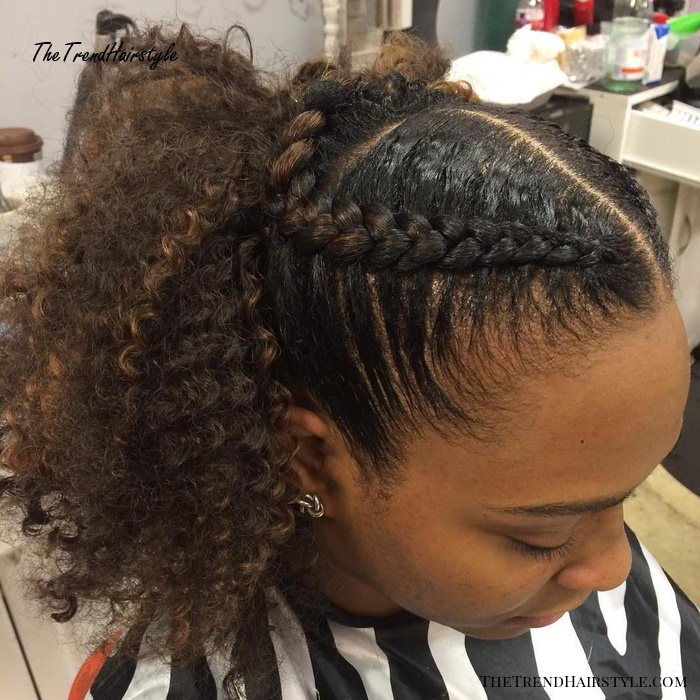 Natural Ponytail With Braids