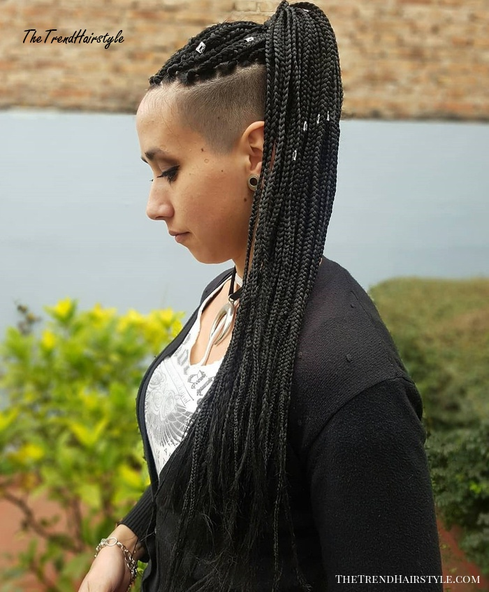 Ponytail with Thin Braids and Undershave