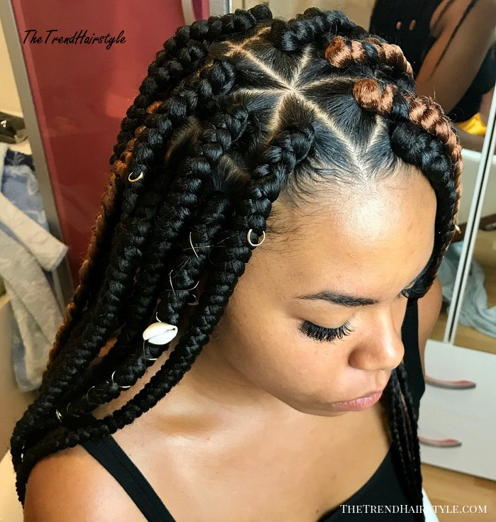 Side-Parted Black Box Braids With Caramel Highlights