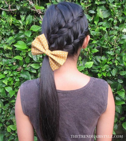 Side Ponytail With Two Diagonal Braids