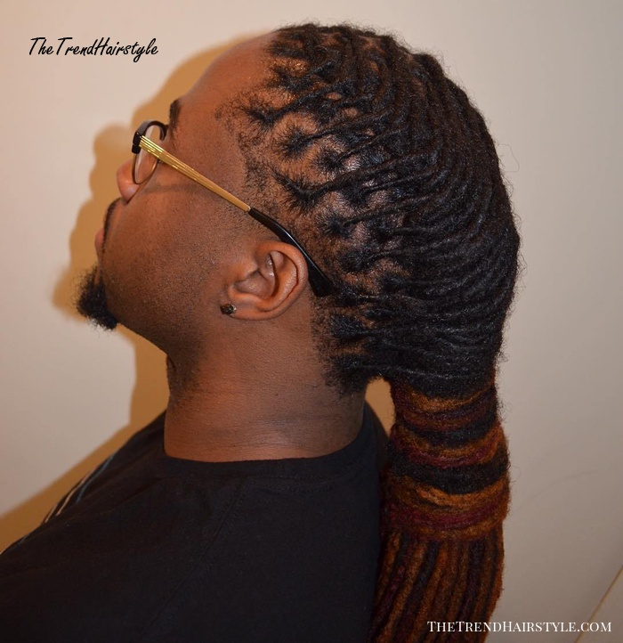 Wrapped Ponytail For Thin Dreadlocks