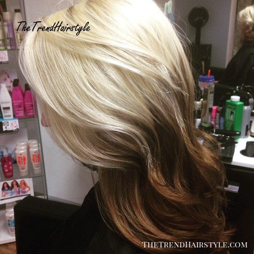 Dramatic Blonde To Brown 40 Glamorous Ash Blonde And Silver Ombre Hairstyles The Trending Hairstyle Page 28