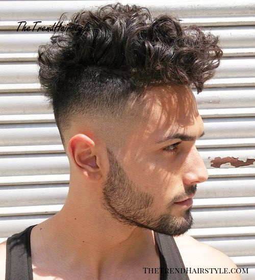 Surprising Faded Curly Undercut 45 Best Curly Hairstyles And Haircuts For Schematic Wiring Diagrams Phreekkolirunnerswayorg