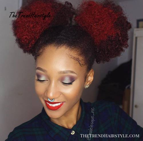 two ponies hairstyle for medium natural hair